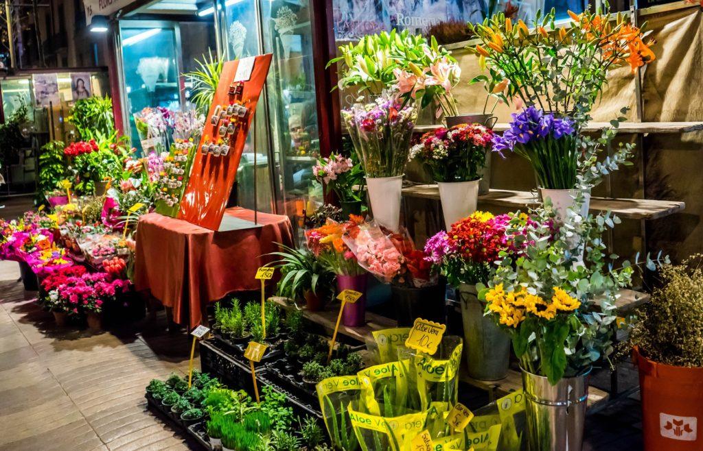 Kaunis Lillepood NÄIDIS
