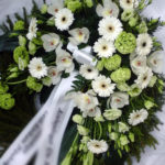 Vilgo Lilled
